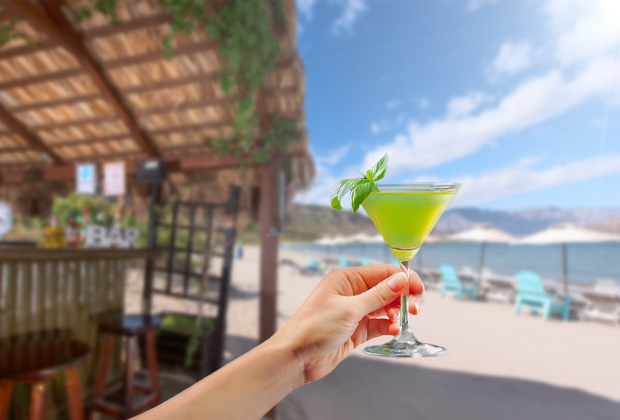 Farm to Bar at Villa del Palmar Loreto
