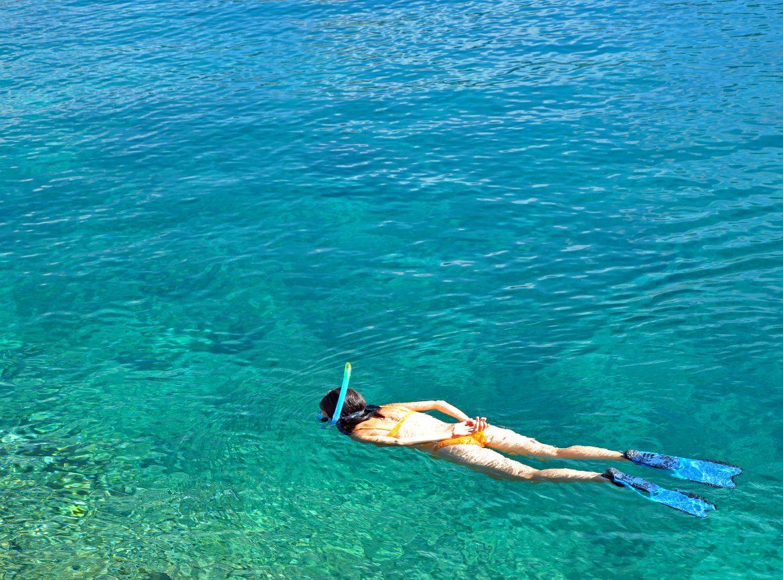 Danzante Island Tour at the Islands of Loreto