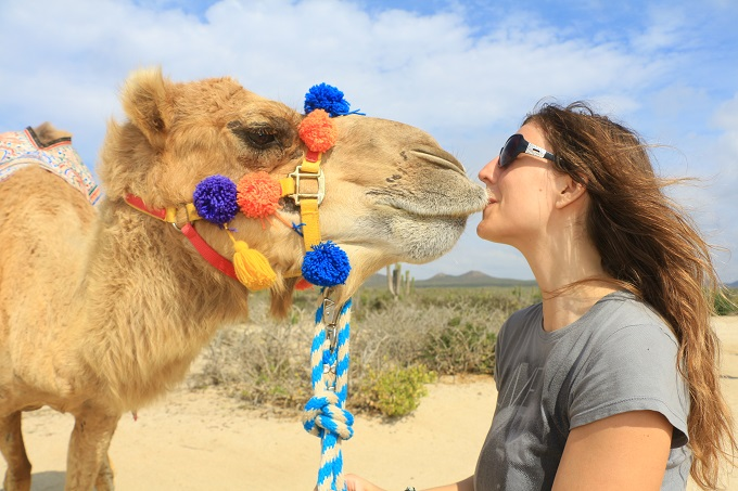 Outback & Camel Safari in Cabo